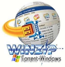 WinZip Registry Optimizer 1.0.72.1448 (2011 г.) [русский(ML)]