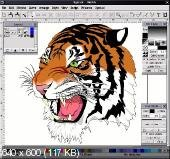 Corel DRAW Graphics Suite X3 PORTABLE
