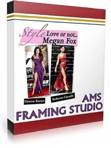 AMS Software Framing Studio 3.67 Portable (2011)