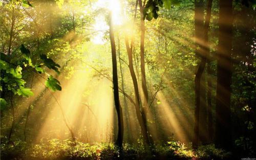 Солнечные лучи обои для рабочего стола