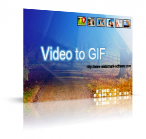 Watermark Softwares Video to GIF 3.2 (2010) Английский
