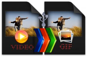 Aoao Video to GIF Converter Portable (2012) Английский