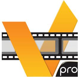 ACD Systems acdVIDEO Converter 2 Professional 2.0.23 + Portable (2012) Русский + Английский