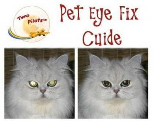 Tint Guide Pet Eye Fix Guide 1.3.1 + Portable (2012) Английский