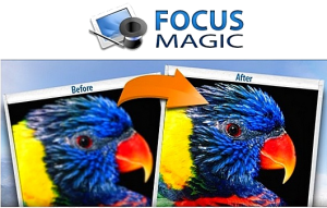 Focus Magic v4.00 Final (2013) ������� + ����������