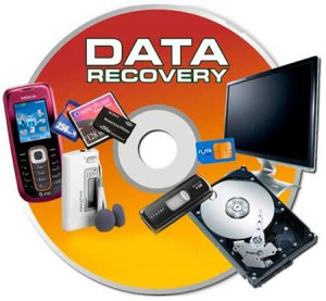 Raise Data Recovery for FAT/NTFS 5.10 (2013) + Portable by Valx