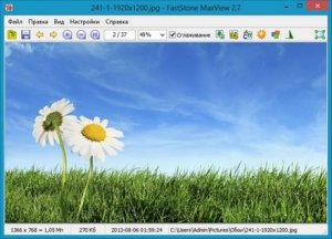 FastStone MaxView 2.7 [Ru] RePack/Portable by VIPol