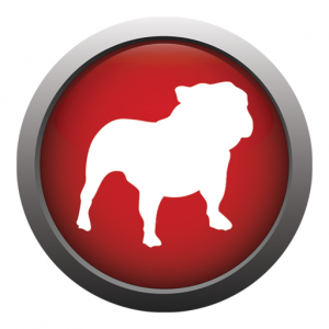 BullGuard Internet Security 2014 14.0.b9 Beta 1 (2013) Английский
