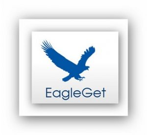 EagleGet 1.1.7.4 Final [Multi/Ru]