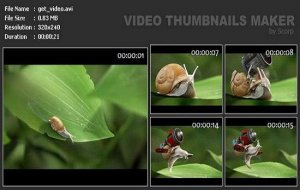 Video Thumbnails Maker Platinum 6.5.0.0 [Multi/Ru]