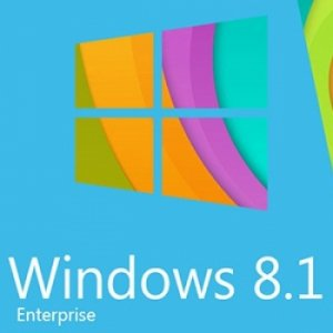 Windows 8.1 Enterprise v.60-61.15 by UralSOFT (x86-x64) [Rus] (2015)