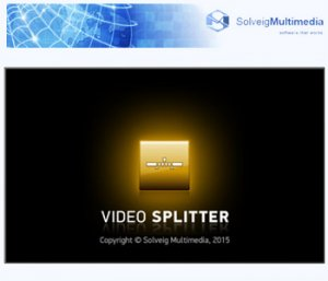 SolveigMM Video Splitter 5.2.1512.16 Business Edition + Portable [Multi/Ru]