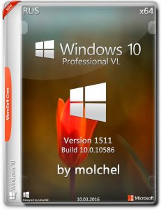 Windows 10 ProVL v1511 100316 by molchel (x64) (2016) [Rus]