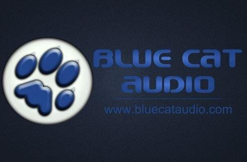 Blue Cat S Patchwork With  Bit
