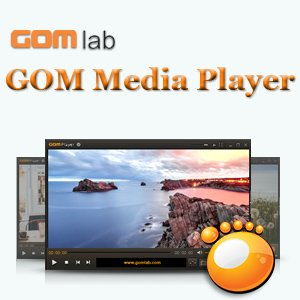 GOM Player 2.3.6 Build 5260 Final [Multi/Ru]