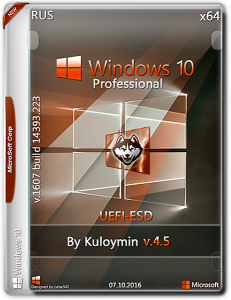 Windows 10 Pro / by kuloymin / v 4.5 / X64 / UEFI-esd / ~rus~