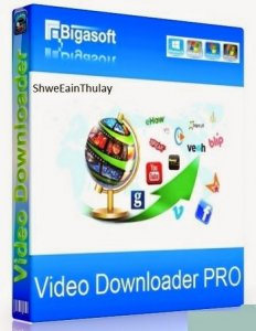 Bigasoft Video Downloader Pro 3.14.3.6319 RePack by вовава [Multi]