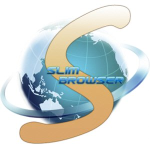 SlimBrowser 8.00 Build 005 + Portable [Multi/Ru]