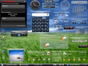 Widgets and Themes Pack for MS WIN (2012)