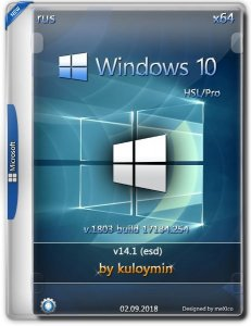 Windows 10 HSL/Pro 1803 x64 by kuloymin v14.1 (esd) [Ru]